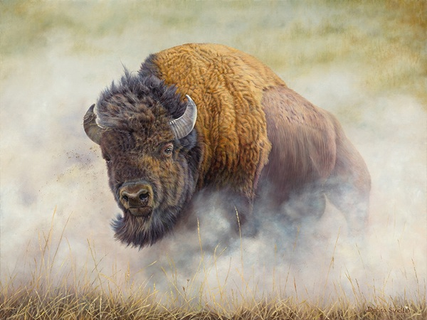 """Thunderbeast"" - 30""x 37"" Oil on Linen- Bison-  Prints Available"