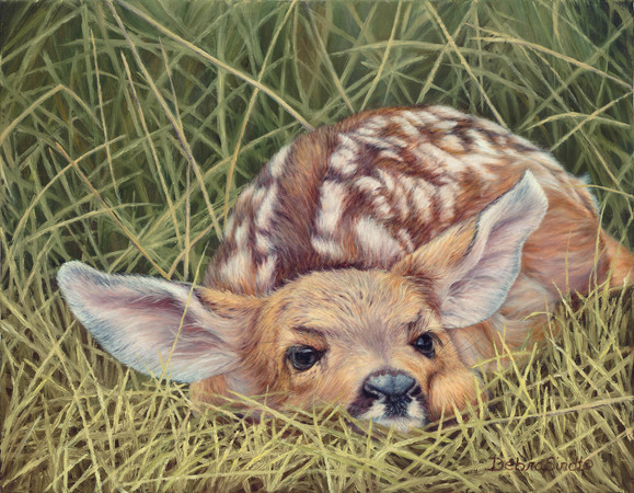 """A New Life Begins"" - 14""x 18"" Oil on Linen- Fawn- Prints Available"