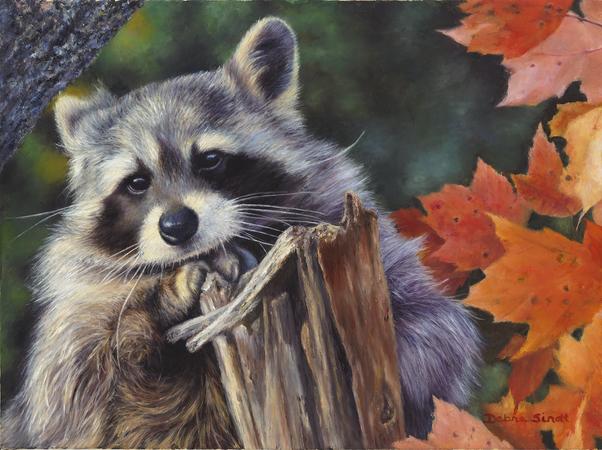 """""""I Need A Break"""" - 12""""x 16"""" Oil on Linen, Raccoon in Fall leaves"""